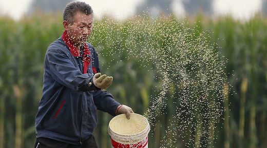 Is this a good thing? Agricultural mega-merger could make China leading GMO producer