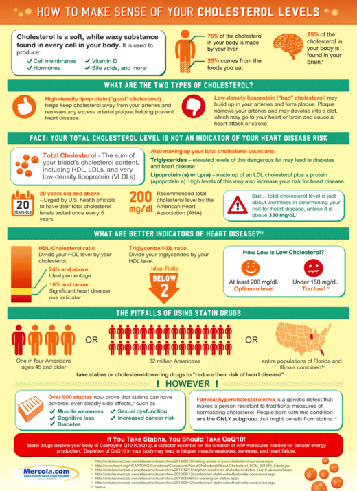 cholesterol level infographic