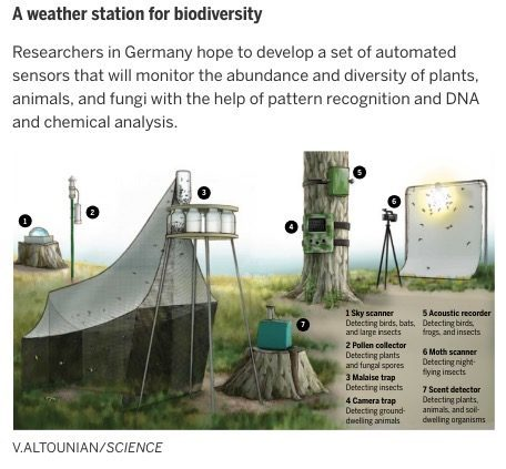 Weather station for biodiversity