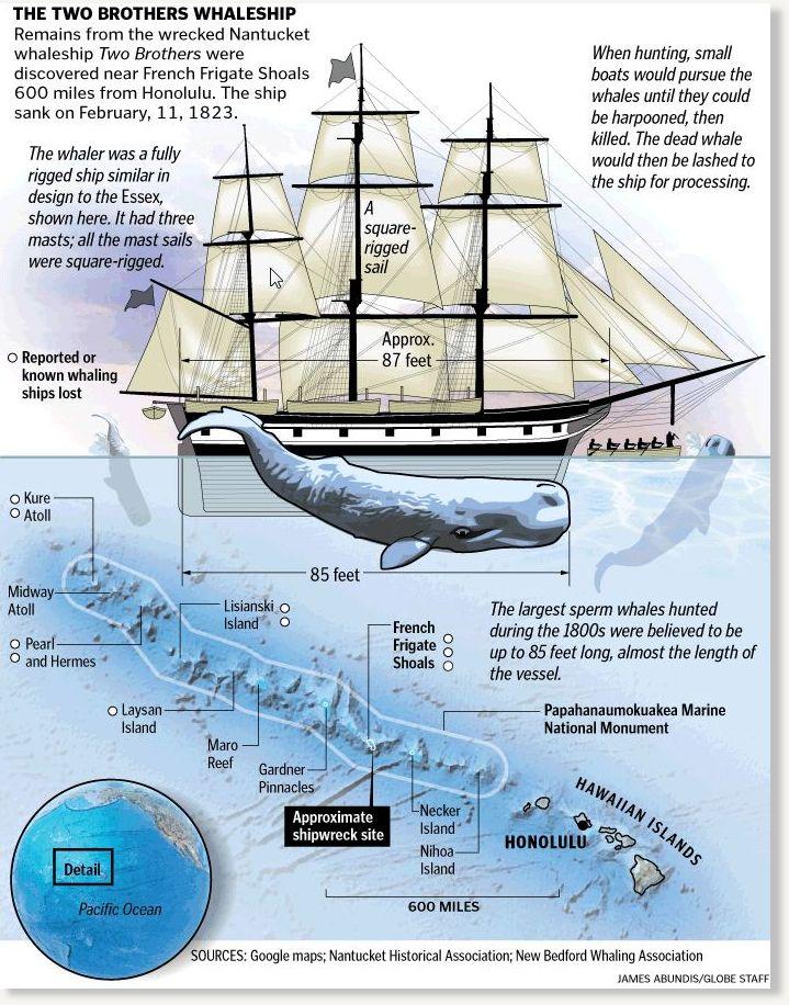 Essex whaleship - Wikipedia