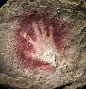 Chauvet cave painting hand