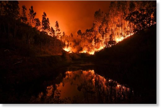 A wildfire is reflected in a stream at Penela, Coimbra