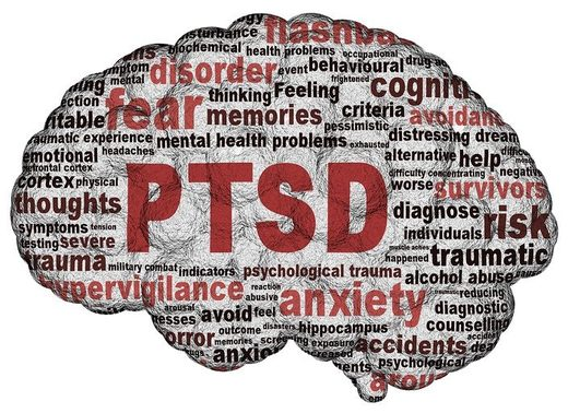 PTSD's effect on the brain