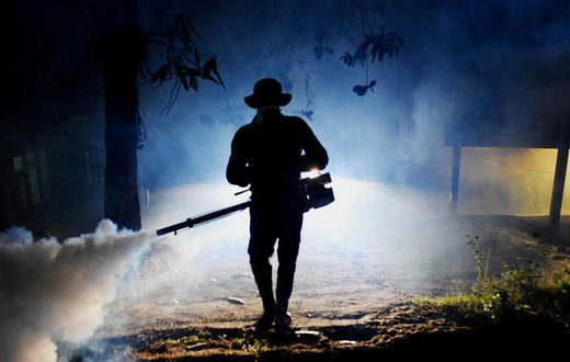 Worker fogging for mosquitos in Sri Lanka