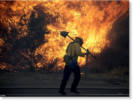 A firefighter gets into position to battle the LaTuna fire burning alongside the 210 freeway in Sunland on Saturday