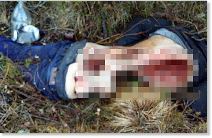 Oil Worker Killed And Eaten By Hungry Brown Bears As