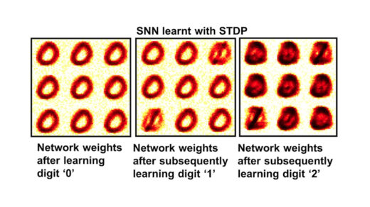 synthetic crystal SNN mimics learning