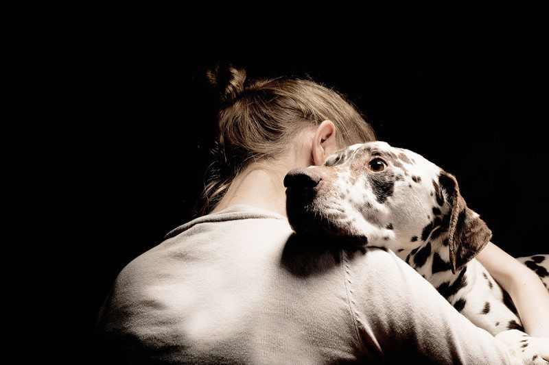 Your dog can smell your emotional state, and will adopt these ...