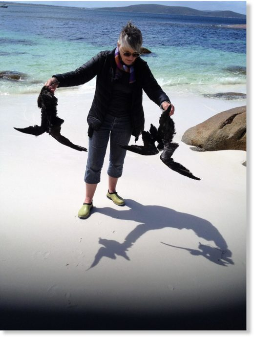 A CCWA volunteer with dead seabirds near Albany.
