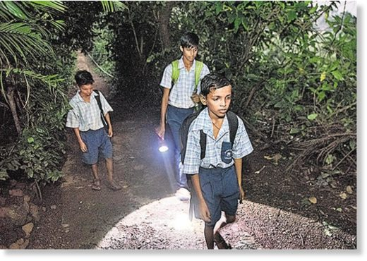 Children in the forest travel to school. They have been instructed to walk only in groups of six.