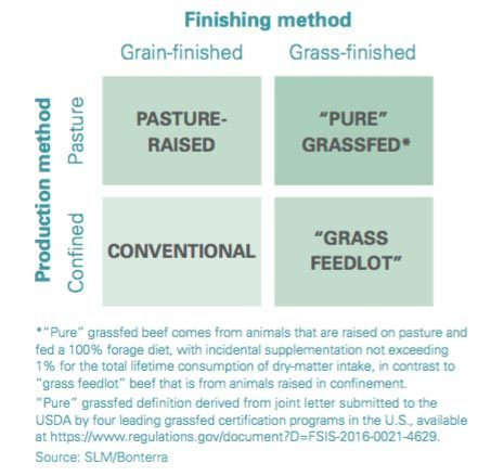 beef finishing methods