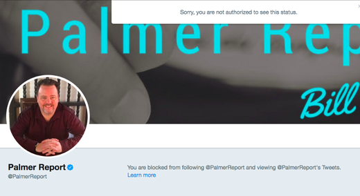 Palmer Report twitter blocked