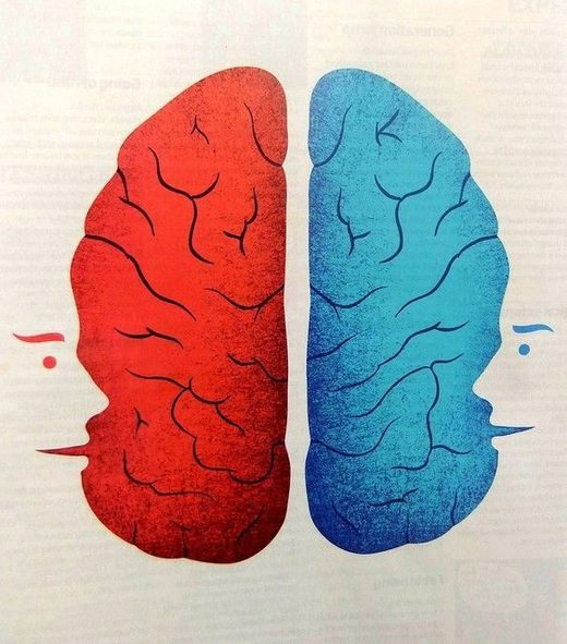 Two Minds in One Brain - The Curious Case of Corpus Callosotomy