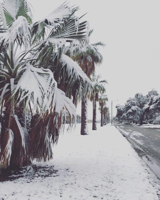 Snow covers Corpus Christi in Texas on December 8 2017. First time in 13 years.
