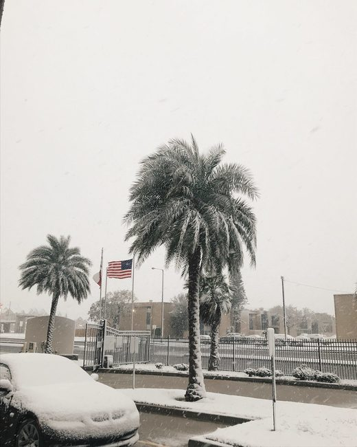 Snow covers Corpus Christi in Texas on December 8 2017. First time in 13 years. via
