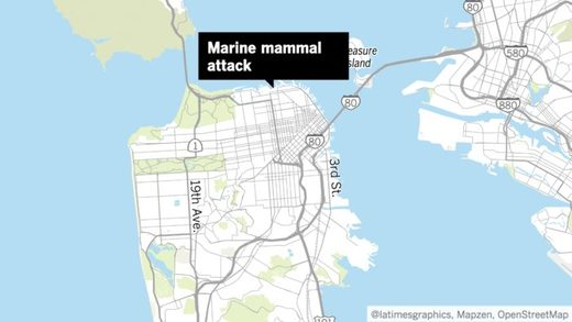 San Francisco marine mammal attack map
