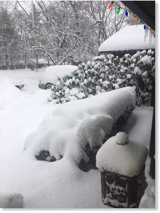 Record snowfall in Erie