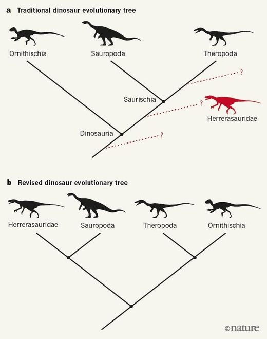 The old dinosaur family tree and the proposed re-write.