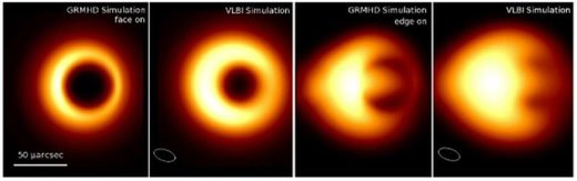 black hole accretion disk profiles