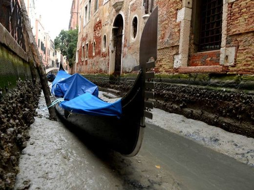 Despite frequent flooding, the water levels in the canals have fallen by almost 60 cm, a record low.