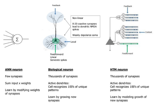 neurons graphic