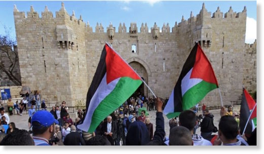 Palestinians carry national flags