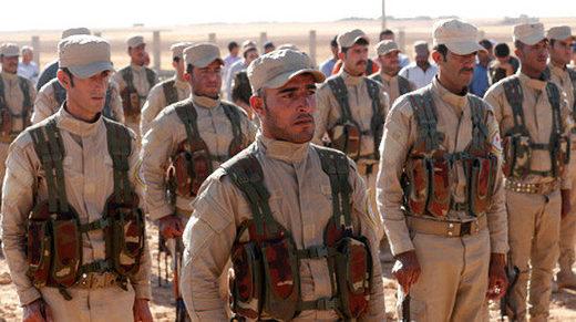 シリア民主軍(SDF)戦闘機