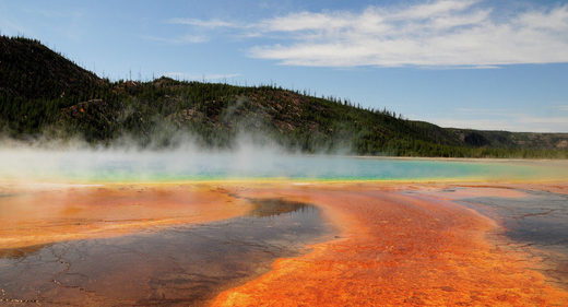 CC BY 2.0 / Michael McCarthy / Yellowstone-4193