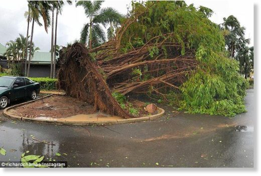 Darwin was ripped apart after Tropical Cyclone Marcus tore through earlier today