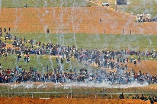 tear gas protest gaza