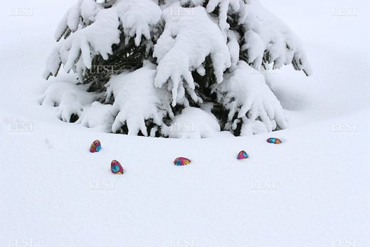 snow, eggs, Easter