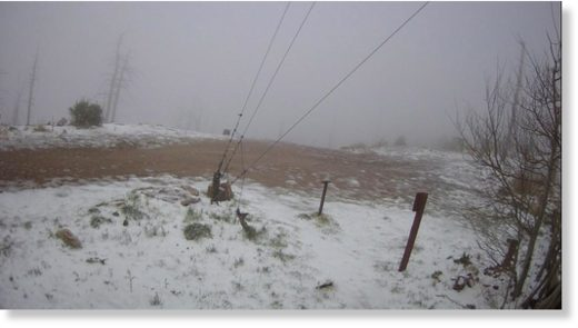 A webcam posted on Mount Lemmon shows Tuesday night's snowfall.