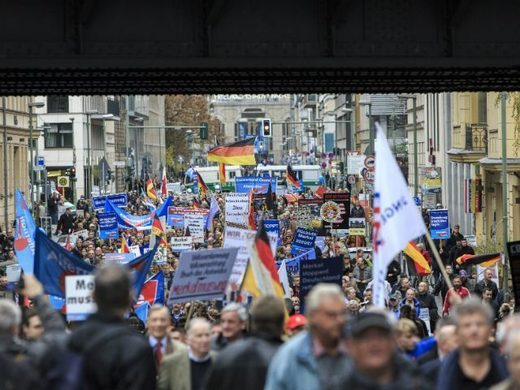 germany protest afd 2015
