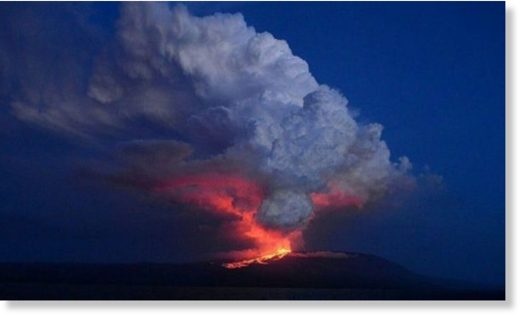 A volcano on the Galapagos Islands has started erupting