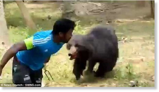 The bear chases after one of the villagers, above, who had tried to slay the animal after it killed a couple