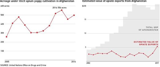 opium production Afghanistan war on drugs