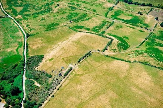 Extensive cropmarks of prehistoric enclosures in parched grassland on the Llyn Peninsula
