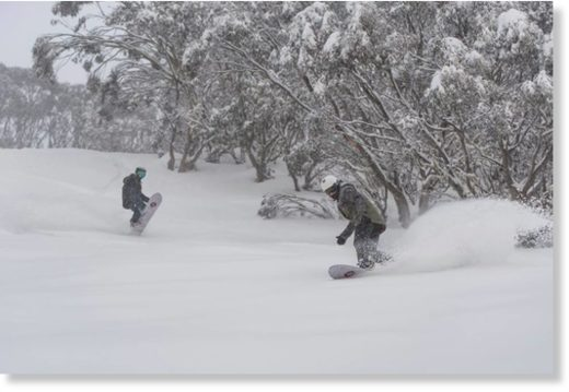 Mt Hotham ski resort in Australia has posted a 102cm snowbase as the snowfall of the past few days moves up a notch ahead of what looks certain to be an epic powder weekend down under.