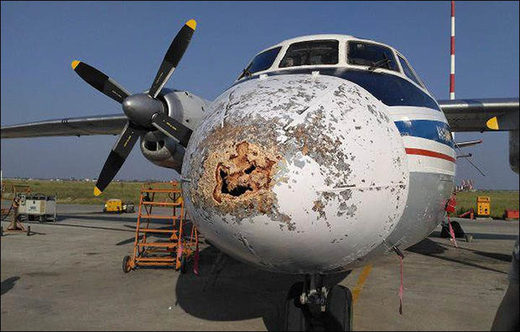 polar airline storm plane damage
