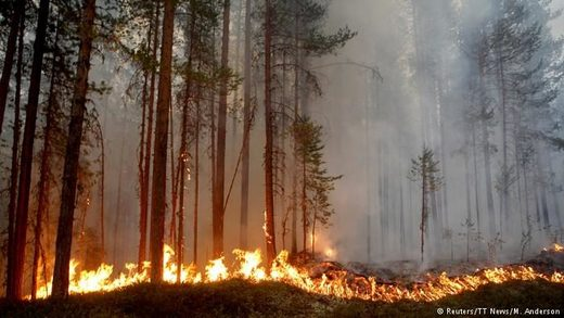 Sweden wildfires Jul 2018