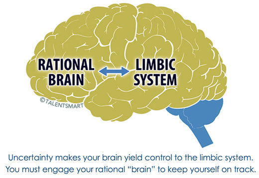 limbic system, uncertainty
