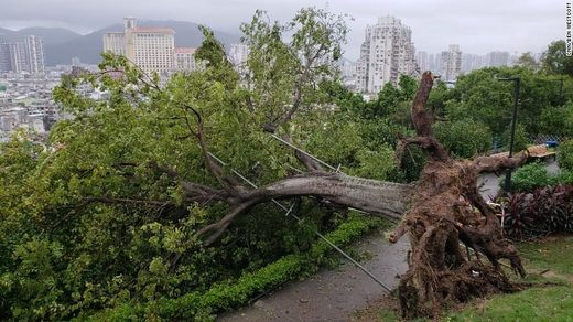 Typhoon Mangkhut damage