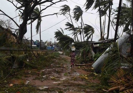cyclone titli damage