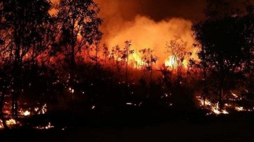 Queensland bush fire