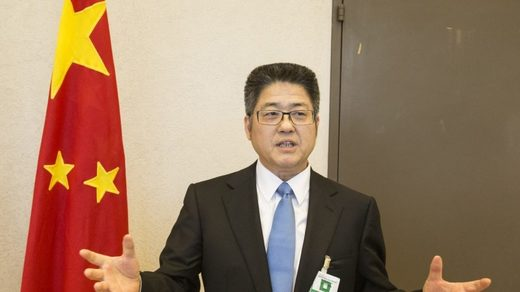 China Vice Foreign Minister Le Yucheng