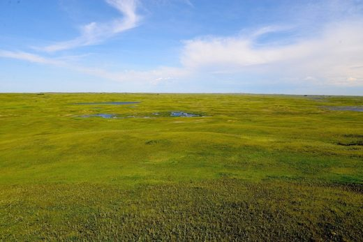 The enormous threat to America's last grasslands