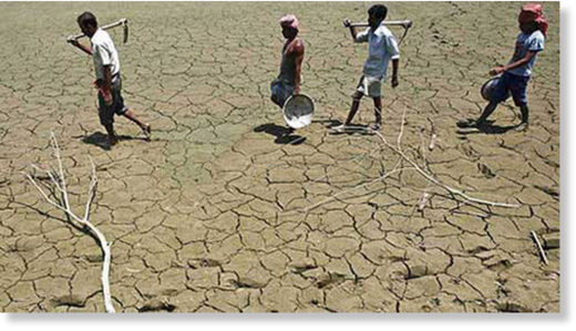 In a total of 269 villages, farmers have suffered crop loss of 50 per cent or more, states the SLBC report. (Representational )