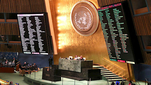 5UN_General_Assembly_Shannon_S.jpg