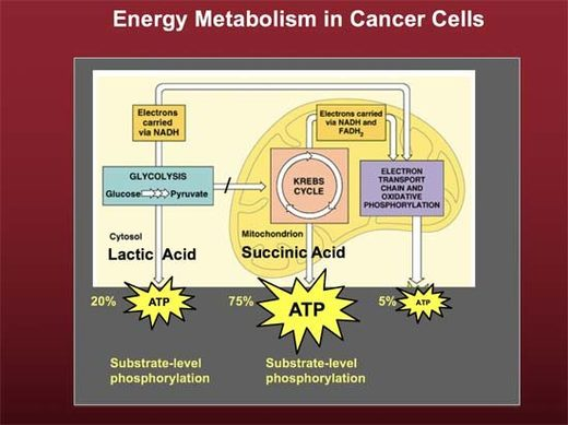 energy metabolism cancer