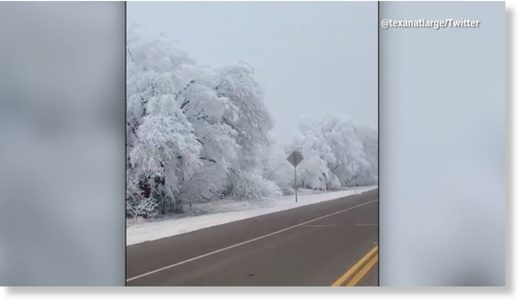 Freezing Fog captured on camera in Texas